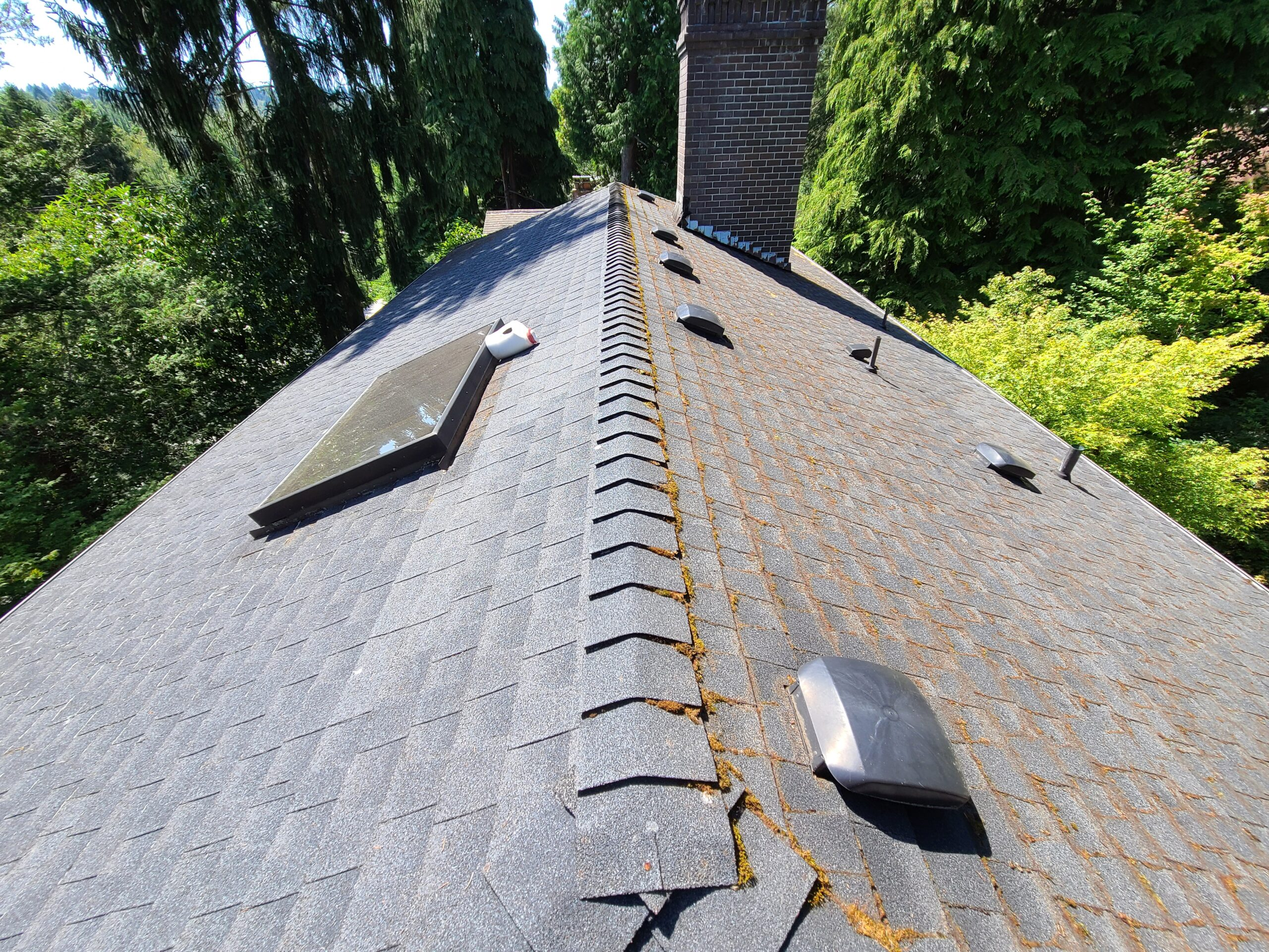 Roof Scraping Treatment Simple Joys Roof Window Gutter Dryer Vent Cleaning
